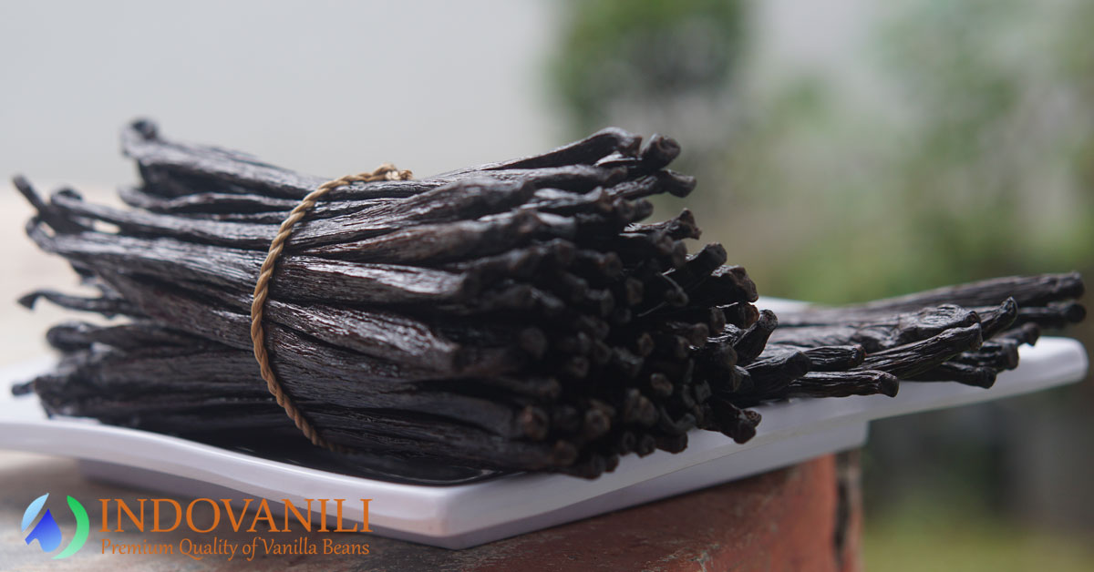 Indonesia Vanilla Beans The Best Quality in the World
